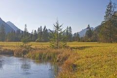Moorland nära Oberammergau arkivfoton