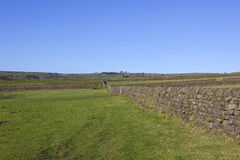 Moorland pastures Royalty Free Stock Photography