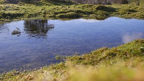 Moorland pool / pond sunny clear winters day. Exposed moorland on a bright winters morning on Bodmin Moor, Cornwall stock footage
