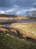 Moorland reservoir Royalty Free Stock Photo