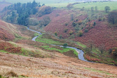 Moorland river Royalty Free Stock Photos