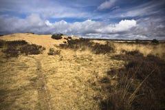 Moorland and sand dune Stock Photo