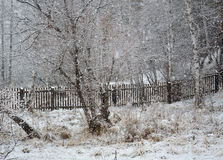 Moorland spring. The snow fell. Royalty Free Stock Images