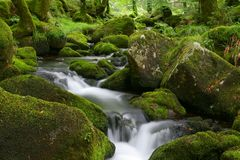 Moorland stream. A stream on Dartmoor. Long exposure Royalty Free Stock Photo