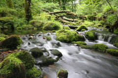 Moorland stream Royalty Free Stock Images