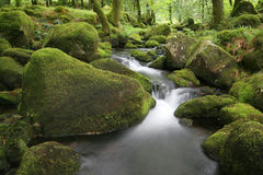 Moorland stream Stock Photo