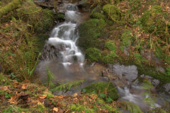 Moorland stream in English national park Royalty Free Stock Images