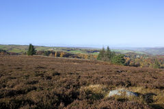 Moorland vista Royalty Free Stock Photo