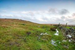 Moorland at Winter Stock Image