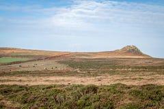 Moors near rosemary and bosigran cornwall uk Stock Photos