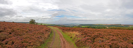 Moors Panoramic Stock Image