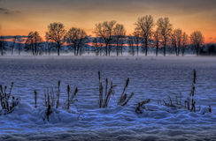 Moors in winter. Moors in the winter time Royalty Free Stock Images