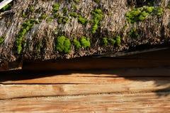 Moos auf dem Strohdach eines alten Blockhauses Stockfotografie