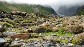 Moos auf den Steinen lizenzfreies stockfoto