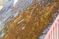 Moos auf der Dachdachspitze Dorfhaus und -dach voll des Mooses Stockfotos