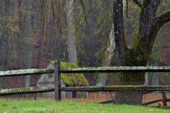 Moos bedeckte den Bretterzaun, der die Grundstücksgrenzen eines Standorts trennt Lizenzfreies Stockfoto