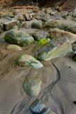Moos bedeckte Felsen auf Strand Stockfotos