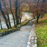Moos bedeckte Treppe durch Fluss Lizenzfreie Stockfotografie