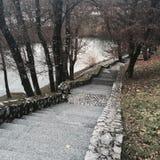 Moos bedeckte Treppe durch Fluss Lizenzfreie Stockbilder