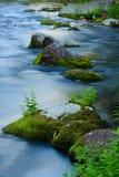 Moos Coverd Felsen im schönen blauen Nebenfluss Stockfotografie
