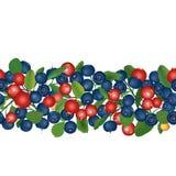 Moosbeer- und Blaubeernahtloser Hintergrund. Reife rote Moosbeeren mit Blättern. Vektorillustration. Lizenzfreies Stockbild