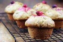 Moosbeere-Kürbis-Muffins Lizenzfreies Stockbild