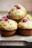 Moosbeere-Kürbis-Muffins Stockbild