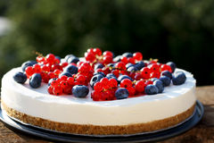 Moosbeere- und Blaubeere-4. Juli-Joghurtkäsekuchen Lizenzfreies Stockfoto