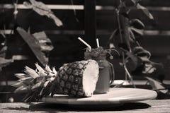 Moosbeerfrischer Saft mit Ananas Lizenzfreie Stockbilder