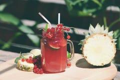 Moosbeerfrischer Saft mit Ananas Stockfotos