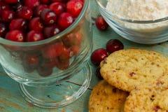 Moosbeerweiße Schokolade Chip Cookies mit einer Seite von Cranberrie lizenzfreies stockbild