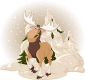Moose against a snowy forest Royalty Free Stock Photography