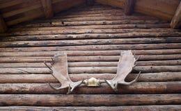 Moose Antlers Mounted Residential Home Alaska stock photos
