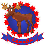 Moose&canada. Label with funny moose, maple leaves and ribbon Stock Photo