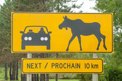 Moose crossing. Warning sign of moose crossing in Canada Stock Photos