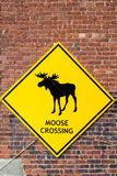 Moose Crossing Sign on Brick Wall Stock Photography