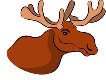 Moose or elk head Stock Photo