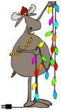 Moose handling Christmas lights. Illustration depicting a bull moose handling a string of multi-colored Christmas lights Royalty Free Stock Photo
