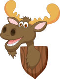 Moose head cartoon Royalty Free Stock Photo