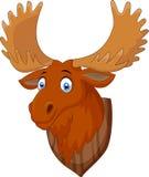 Moose head cartoon Stock Photos