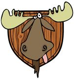 Moose head mount Royalty Free Stock Photos