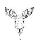 Moose head stylized image Royalty Free Stock Photo