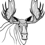Moose head Royalty Free Stock Image