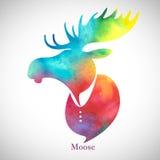 Moose head Watercolo silhouette Stock Photos