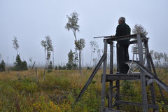Moose hunter from left side standing in a hunting tower Royalty Free Stock Image