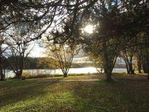 Moose Lake. State park in Minnesota royalty free stock image