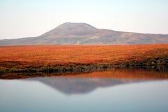 Moose Lake Yukon. August colours in the Yukon, Dempster Highway Stock Photos