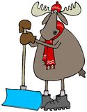 Moose leaning on a snow shovel Royalty Free Stock Image