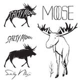 Moose and Lettering Monochrome Illustration Royalty Free Stock Image