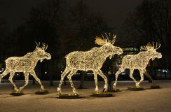 Moose on line. Moose parade lights up in the dark on Nybroplan in Stockholm Royalty Free Stock Photos